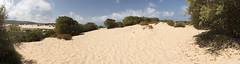 Sua Maesta' : la Duna di sabbia di Piscinas (Dei's Light) Tags: sardegna arbus piscinas mare isola estate sabbia duna macchiamediterranea cielo