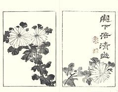 Florist's chrysanthemum (Japanese Flower and Bird Art) Tags: flower florists chrysanthemum grandiflorum asteraceae buncho tani nanga woodblock picture book japan japanese art readercollection
