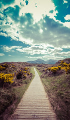 The Path To The Beach (Glenn Cartmill) Tags: northernireland murlough nature reserve murloughnaturereserve glenn cartmill canon eos 650d may 2016 newcastle dundrum uk ireland unitedkingdom path blue sky clouds outdoor summer mountain mournes mournemountains countydown