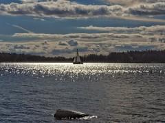 Sun's rays make the sea sparkle like diamonds (KaarinaT) Tags: sea water diamonds sparkle mood clouds sky sailboat vuosaari helsinki finland suomi taivas pilvet meri timantit