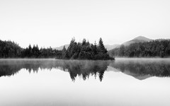 Everything About You... (John Westrock) Tags: blackandwhite reflection trees nature longexposure washington pacificnorthwest fog canoneos5dmarkiii canonef1635mmf4lis goldcreekpond