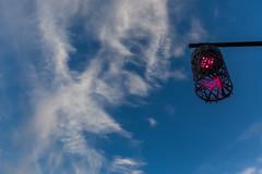 Lanterne au parc de la source (Pierre ESTEFFE Photo d'Art) Tags: lanterne ciel nuage soir orlans loiret45 france