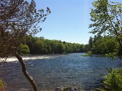 Kawpakwakog River (YYZ John) Tags: baysville canada lakeofbays muskoka ontario river trees water kawpakwakogriver kawpakwakog stream