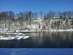 Daydreaming (Joanna Kurowski Photography) Tags: winter snow birds river