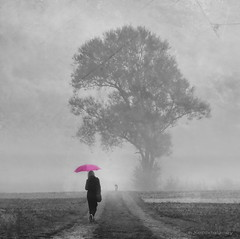 A Pink Umbrella Morning (h.koppdelaney) Tags: life morning friends woman dog mist art smile digital photoshop walking landscape symbol dream picture happiness philosophy together fantasy friendly metaphor symbolism psychology archetype koppdelaney