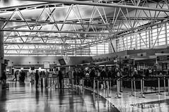 International (Tim L Lowe) Tags: nikon waiting texas united houston lone unitedairlines internationalterminal georgebushinternationalairport d300s