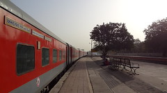Bidding Goodbyes :( !!! (Jai BGKT) Tags: from new morning its last early delhi it dec part journey sj adi goodbye mighty complete ahmedabad bidding rajdhani cantt proceeds ndls