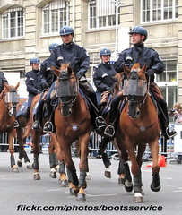 """bootsservice 12 7674 R (bootsservice) Tags: horses horse paris cheval spurs uniform boots police gloves cavalier uniforms rider policeman bottes riders chevaux uniforme policemen cavaliers policier uniformes gants policiers """"police """"riding boots"""" eperons nationale"""""""