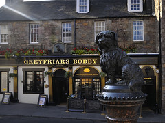 Greyfriars Bobby Divine Light (Belhaven2011) Tags: street light dog sunlight streets history love statue bar scotland pub nikon edinburgh scottish historic explore devotion rays sunrays loyal loyalty greyfriars publichouse greyfriarsbobby georgeivbridge 1685 explored bobbysbar 1685mm nikond5000 belhaven2011 auldjockgray