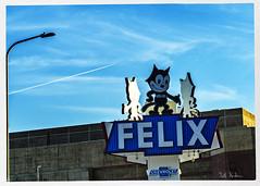 Felix (swanksalot) Tags: cat signs chevy felix chevrolet la losangeles frommycarwindow figueroa 35mm