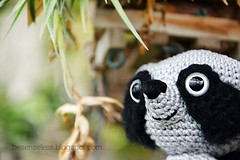Febo il procione - amigurumi raccoon (airali_gray) Tags: white black lana wool eyes crochet safety cotton raccoon hook amigurumi racoon procyon orsetto procione uncinetto cotone lavatore