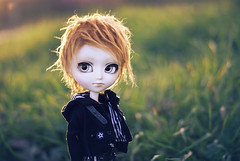 Shaun (neys.) Tags: cute male nature grass fur outside doll stock wig mao neko maomao isul nekoneko