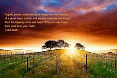 Luke 6:45 nlt (Bob Smerecki) Tags: life new love cup church true rock easter born high 645 truth heaven king christ god shepherd spirit brother father ghost religion pray jesus luke lord christian mount holy moses again lamb bible alive commandments messiah risen salvation promise abba sanctuary tabernacle nations sabbath blessed redeemer righteousness almighty sins scriptures passover nlt faithful inheritance oldtestament everlasting slain forgive baptised heals deciple crucified preist apostle forgiven resserection strongtower mosthigh ofolives