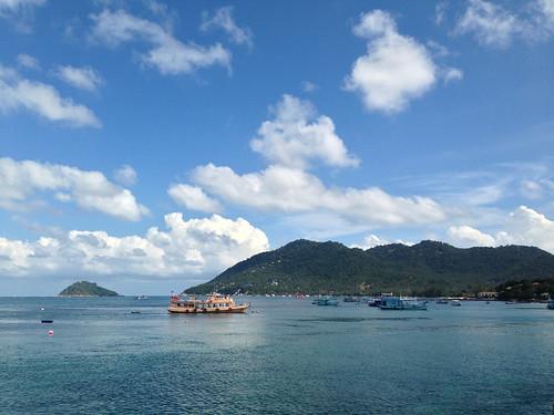 Koh Tao Harbor