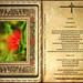Lectura Libro de los Hechos de los Apóstoles 7,51-60.8,1a.  Martes 16 Abril 2013