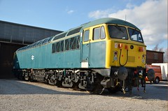 56006 (47843 Vulcan) Tags: grid class56 railblue 56006 barrowhillroundhouse class56group