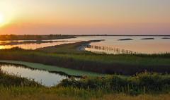 delta del Po (gaetano pappuini) Tags: del delta po