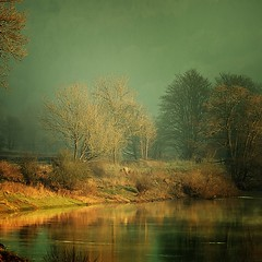 Wye river (Eric Goncalves (lots of catching up to do!!)) Tags: trees nature gloucestershire treescape waterscape wye wyeriver nikond7000