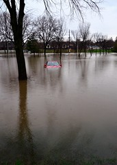 Surrounded by Water (Theresa*) Tags: cars whatevertheweather illinois flood oneofakind april showers wheaton villapark oakbrook wetreflections wateroceanslakesriverscreeks springandsummeraroundtheworld adayinthelifeofours postthebest nikon7000