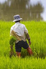 ChiangRai_5595 (JCS75) Tags: canon chiangrai asia asie thailand thailande