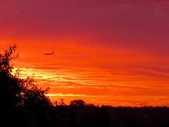 365-2-231 Calgary morning skies (benlarhome) Tags: calgary alberta canada 365 sky skies sunset sunrise red