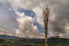 Tribal Chief at Watch Tower (tehhanlin) Tags: indonesia wamena westpapua irianjaya jayapura nusantara thedanis sukudani tribe humaninterest portrait lembahbaliem baliemvalley lembahbaliemfestival baliemvalleyfestival sony a7r2 a7rm2 ngc