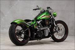 bikes-2009world-096-e-l