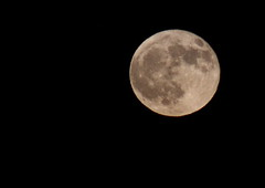 Moon September 16 2015 056 (Az Skies Photography) Tags: harvest moon harvestmoon september 16 2016 september162016 91616 9162016 night luna lunar sky arizona skyline skyscape arizonasky arizonaskyline arizonaskyscape nightsky canon eos rebel t2i canoneosrebelt2i eosrebelt2i moonrise rio rico az riorico rioricoaz