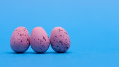 43:365:2013 - Three little eggs from school are we (phil wood photo) Tags: pink food easter chocolate mini eggs 365 february day43 project365 2013 colourchallenge 3652013 12022013
