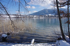 Winter in Tegernsee (Germany) (armxesde (off - too much work)) Tags: winter mountain lake snow alps reflection tree ice water reeds germany bayern deutschland bavaria see pentax spiegelung tegernsee k5 mygearandme mygearandmepremium mygearandmebronze mygearandmesilver mygearandmegold mygearandmeplatinum mygearandmediamond
