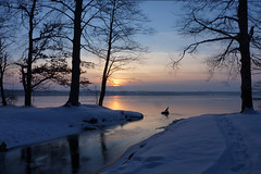 Cold sunset ~ EXPLORE (dorena-wm) Tags: blue schnee winter light sunset sun lake snow cold reflection tree nature landscape see evening abend licht sonnenuntergang natur explore blau kalt landschaft sonne spiegelung baum starnbergersee februar reflektion 2013 dorenawm nex7