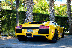 Sky High (Matthew C. Photography) Tags: classic beach yellow photography hotel nikon matthew c parking lot palm breakers lamborghini valet murcielago murci cavallino 2013 d3200 lp640 murcie