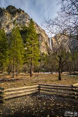Bridalveil Falls - Yosemite (Riven Imagery) Tags: park 3 canon evening waterfall mark iii falls national yosemite granite 5d yosemitenationalpark bridalveil mk ef1740l 5d3
