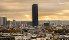 Tour Montparnasse (steve lorillere) Tags: street bridge light paris luz night licht nacht eiffeltower voiture ponte notredame sacrcoeur lumiere toureiffel torreeiffel pont noite triumphalarch rua statueofliberty  brcke rue eiffelturm nuit arcdetriomphe ville  triumphbogen garedelyon  sacredheart arcotriunfal nossasenhora ourlady     citycar herzjesu  statuedelalibert champselyse  strase    esttuadaliberdade  sagradocorao  unseredame    stadtauto carrodecidade elysefelderstationlwen elysefieldsstationlion oscamposdeelysee