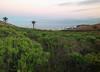 Verodal Tabayesco Feb13 LZ 2 (lanzarote rural) Tags: natural lanzarote paisaje canarias palmera verode tabayesco