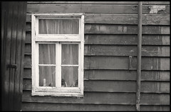 window (ha*voc) Tags: wood bw film window rangefinder ilfordxp2super woodenhouse marken leicam5 voigtlandernokton50mmf15