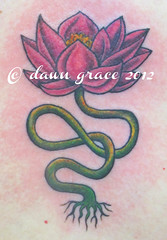 www.dawngrace.com (professional tattooing by dawn grace) Tags: flowers trees woman chicago black flower tree floral leaves tattoo lady female neck foot back leaf illinois vines women midwest toes artist toe breast hand graphic feminine finger chest butt leg feather ivy vine peacock stomach dot tattoos professional thigh hips booty tummy elbow ribs swirl swirls lacey wrist rib hip lower dots henna custom delicate tatoo knee ankle calf shoulder forearm swirly tatto bicep collarbone blackwork detailed intricate tattooing viney hamsa menhdi dotwork ipiccy