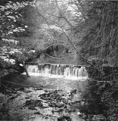 Medium Format Wasserfall (450Davide) Tags: england white black nature newcastle photo waterfall foto tl united kingdom tyne medium format pentacon six termszet upon anglia jesmond dene fekete fehr vzess pentasix egyeslt kirlysg tkrreflexes kzpformtum