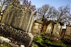 Deadland (Aurelien G. Photographie) Tags: friedhof france abandoned grave dead cross mort rip tomb lorraine decayed cimetiere juden tombe cimetery cimitero moselle restinpeace juif jdisch morbide hbreux juive graftombe reposeenpaix cemeterier reposeinpeace