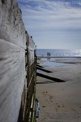 Break in the weather (Rusty Marvin - JohnWoracker.com) Tags: sea sky people dog sun seaweed beach puddle sand bright isleofwight groin breakwater yaverland blueflag tw4 seasideawards