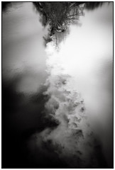 Sky is wet (Salva Magaz) Tags: reflection rio river photography mirror nikon photographer geneva photos photojournalism rivière jordan reflet espejo fullframe miroir genève stéphane ginebra reflejos fleuve rhone salva photographe socialphotography fotoperiodismo documentaryphotography photojournalisme pressphotography d700 swissphotographer nikond700 oqv salvamagaz wwwmagazcom omquivoyage zurini wwwsalvamagazcom fotografoespañol