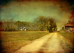 Along a Rural Farm Path:  US 258 North, Halifax County, North Carolina (EdgecombePlanter) Tags: painterly texture abandoned barn rural nc cottage textured dirtpath rurallandscape oldvarnish