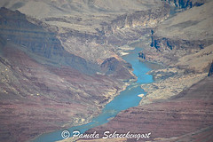 Colorado River (pamelainob (Pamela Schreckengost)) Tags: arizona grandcanyon coloradoriver southrim desertview grandcanyonnationalpark desertviewdrive grandcanyonsouthrim pamelaschreckengost pamschreckcom 2013pamelaschreckengost