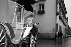 Krakow (Artun York) Tags: bw rain blackwhite pentax ngc poland krakow 1855 dslr cracow krakov k7 siyahbeyaz polonya