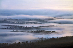 ETHEREAL (Jeka World Photography) Tags: mountains fog clouds jasper valley arkansas inversion ozarks bostonmountains oceanofclouds jekaworldphotography jeffrosephotography