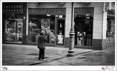 Agua y viento - p365jvr - 22 de marzo de 2013. 81/365 (Javier Vegas (Alias El Vegas)) Tags: vegas 22 lluvia agua nikon viento 03 marzo ajedrez 81 palencia d90 callemayor 2013 p365jvr