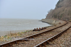 aberdovey nature reserve march 2013 (mikek666) Tags: sea praia beach strand port train mar meer mare playa zee trem deniz treno spiaggia trein habour hondartza vlak plaj plaa