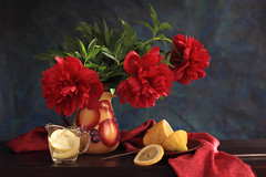 Im So Fortunate To Be Red! (panga_ua) Tags: morning flowers red stilllife color art water fruit composition canon spectacular morninglight spring lemon artwork artistic spirit availablelight gorgeous may naturallight ukraine poetic peony creation fabric passion imagination natalie reds arrangement sunbeam tabletop peonies bodegon naturemorte panga passionate artisticphotography teaspoon lemonslices rivne naturamorta artphotography sharpfocus glasscup passionatered woodentabletop paintedjug ceramicsaucer  nataliepanga pastelsbackground imsofortunatetobered