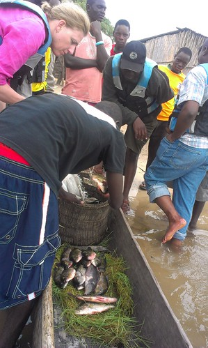 Fish traded on Barotse Floodplain, Zambia. Photo by Froukje Kruijssen, 2013.