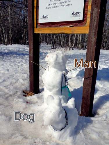 SnowMan & Dog